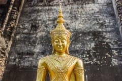 Золотой портрет Будды, Wat Chedi Luang, Таиланд стоковая фотография rf