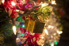 Золотой подарок на ветви дерева Нового Года стоковая фотография rf