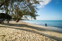 Золотой пляж в тропиках Стоковое Изображение
