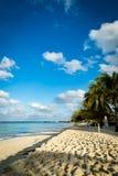 Золотой пляж в тропиках Стоковые Изображения RF