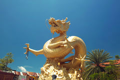 Золотой дракон. Городок Пхукета, Таиланд. Стоковое Фото