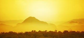 Золотой слой Стоковые Фото
