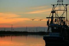 Золотой луг, Луизиана стоковые изображения
