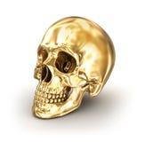 Золотой человеческий череп над белизной Стоковые Фото