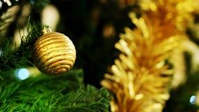Золотой шарик рождества украшает смертную казнь через повешение на зеленой сосне Стоковое Изображение RF