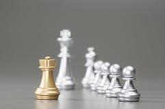 Золотой шахмат грачонка Стоковое Фото