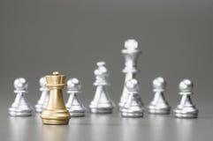Золотой шахмат грачонка Стоковое Изображение RF