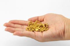Золото в наличии Стоковая Фотография
