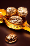 Золото грецких орехов на черной предпосылке стоковые изображения