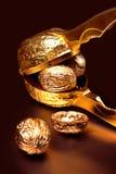 Золото грецких орехов на черной предпосылке стоковые изображения rf