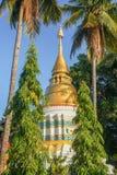 Золото и белая пагода стоковая фотография rf