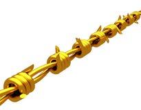 Золото- колючая проволока Стоковые Фотографии RF
