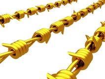 Золото- колючая проволока Стоковые Фото