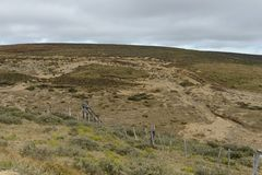 Золотодобывающий рудник на острове Огненной Земли Стоковое фото RF