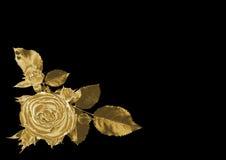 золото подняло Стоковые Изображения