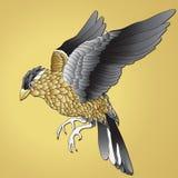 Золото птицы Птица витает с желтыми и черными пер на желтой предпосылке Стоковое фото RF