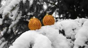 Золотые безделушки рождества вися в дереве Стоковые Фото