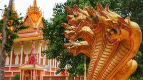 Золотые головы дракона в буддийской пагоде в Вьетнаме Стоковое Изображение RF