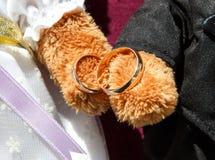 Золотые обручальные кольца в лапках медведей игрушки Стоковые Фотографии RF