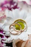 Золотые обручальные кольца на цветках весны белых и фиолетовых Стоковая Фотография