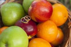 Золотые обручальные кольца smoth среди красочных плодоовощей Стоковые Фото