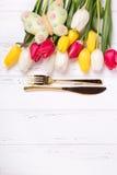 Золотые тюльпаны столового прибора, бабочки, белых и красных цветут дальше сватают Стоковые Фотографии RF