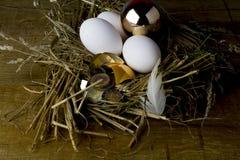 Золотые яичко и деньги Стоковое Изображение RF