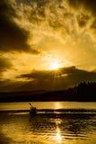 Золотые Paddlers захода солнца Стоковое фото RF