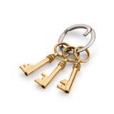 3 золотых ключа Стоковое Изображение