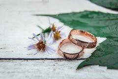 2 золотых обручального кольца на белом деревянном столе Стоковые Фотографии RF