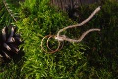 2 золотых обручального кольца на мхе Стоковые Изображения