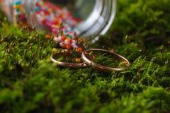 2 золотых обручального кольца на мхе Стоковые Изображения RF