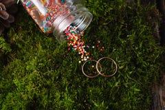 2 золотых обручального кольца на мхе Стоковое Изображение