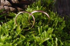 2 золотых обручального кольца на мхе Стоковое фото RF