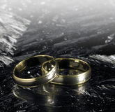 2 золотых обручального кольца на поверхности льда Стоковое Изображение