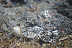 Золы и идеал угля для предпосылки и текстуры Стоковое Фото