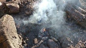 Золы кучи ожога Стоковое Фото