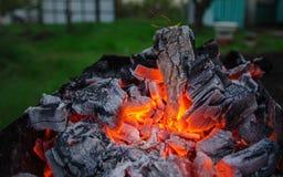 золы smoldering горящий уголь Барбекю BBQ Стоковое Изображение
