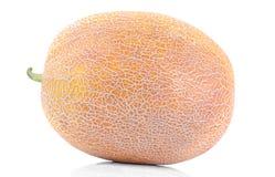 зрелая большая дыня на предпосылке изолированной белизной Плодоовощ Конец-вверх стоковая фотография rf