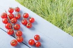 Зрелая ветвь томата вишни на деревянном столе в внешнем Взгляд сверху Предпосылка зеленых трав для космоса экземпляра Стоковая Фотография RF