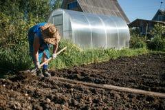 Зрелая женщина засаживая картошки в ее саде Стоковые Фотографии RF