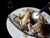 Зрелая зажаренная скумбрия на tablespoon выше блюдо риса Стоковые Изображения RF
