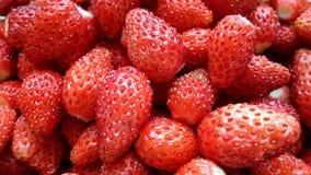 Зрелая и сладостная одичалая клубника Конец-вверх ягод Стоковая Фотография