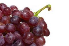 Зрелая красная виноградина при пук изолированный на белой предпосылке Стоковые Изображения