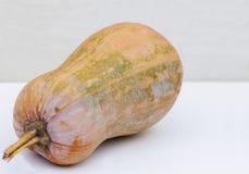 Зрелая оранжевая тыква на белой предпосылке стоковое изображение rf