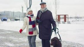 Зрелая пара идет с большой коричневой собакой в парке зимы сток-видео