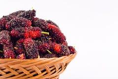 зрелая шелковица в коричневой корзине плодоовощ с витаминами на изолированной еде плодоовощ шелковицы белой предпосылки здоровой Стоковая Фотография