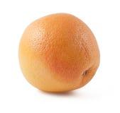 зрелое грейпфрута померанцовое Стоковая Фотография