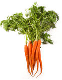 зрелое морковей органическое Стоковое фото RF