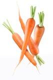 зрелое морковей свежее Стоковая Фотография